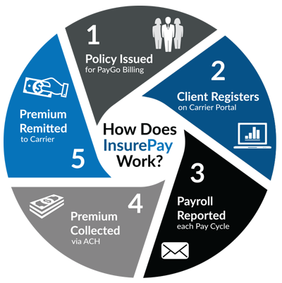 insurepay-infographic